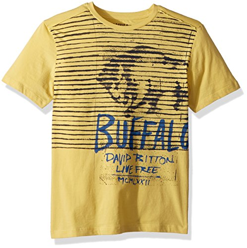 Buffalo by David Bitton Big Boys' Short Sleeve Graphic Tee Shirt, Errit Citron, Large (14/16)