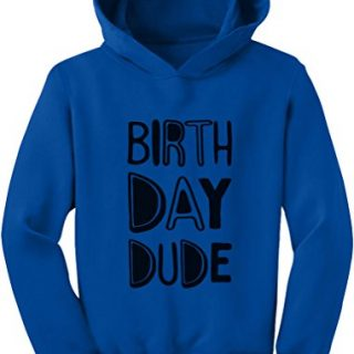 Tstars Gift for Birthday Boy - Birthday Dude Party Toddler Hoodie 2T Blue