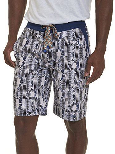 Robert Graham Men's Tongva Park Swim Trunk, Multi, 38
