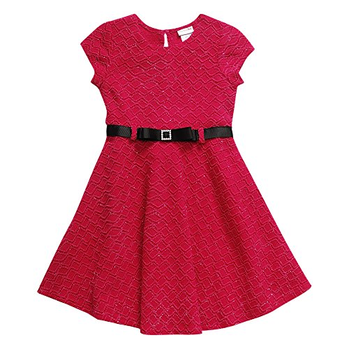 Sweet Heart Rose Little Girls' Belted Jacquard Fashion Dress