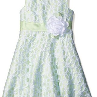 Sweet Heart Rose Little Girls Organza Pleated Special Occasion Dress, Green/White, 6X