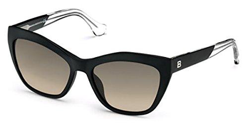 Balenciaga BA/47 Sunglasses (MATTE BLACK - 02B)