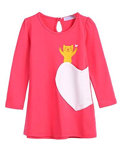 Arshiner Kids Little Girls Long Sleeve Pullover Casual