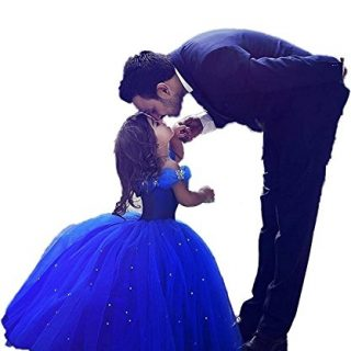 Girls Blue Prom Puffy Tulle Princess Ball Gowns Kids Pageant Flower