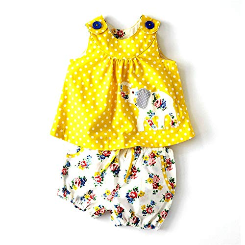Cute Baby Girl Spring Summer Stripe Sleeveless Tee Floral Short Pants Set