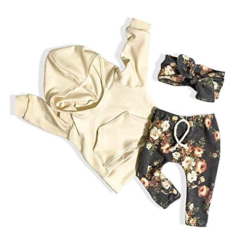 C&M Wodro Baby Girls Long Sleeve Flowers Hoodie Tops and Pants Outfit