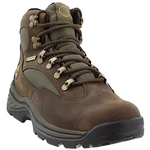 Timberland Women's Chocorua Trail Boot,Brown
