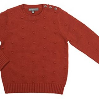 Pompomme Baby Boy's Burnt Orange textured sweater