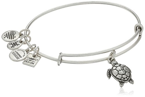 Alex and Ani Turtle Rafaelian Silver Bangle Bracelet